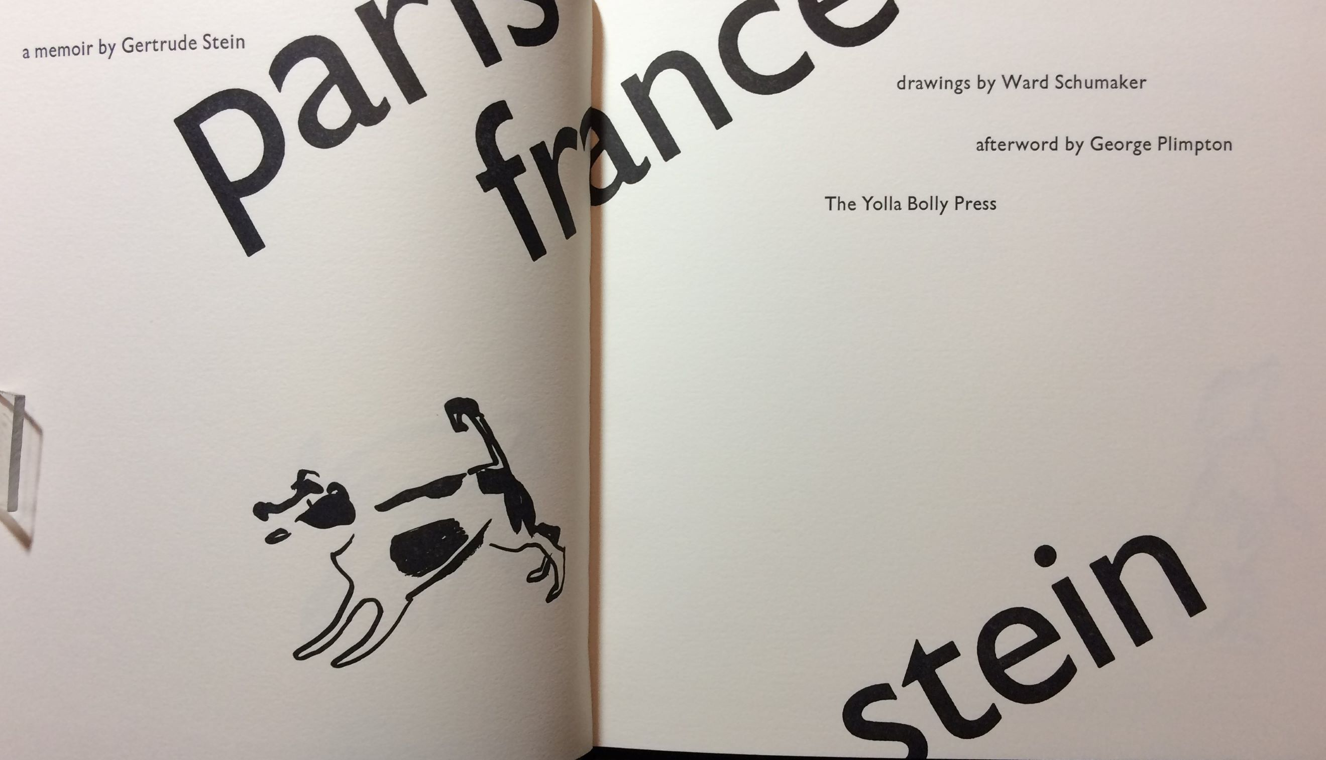 Image for Paris France.  Illustrated by Ward Schumaker with an afterword by George Plimpton.