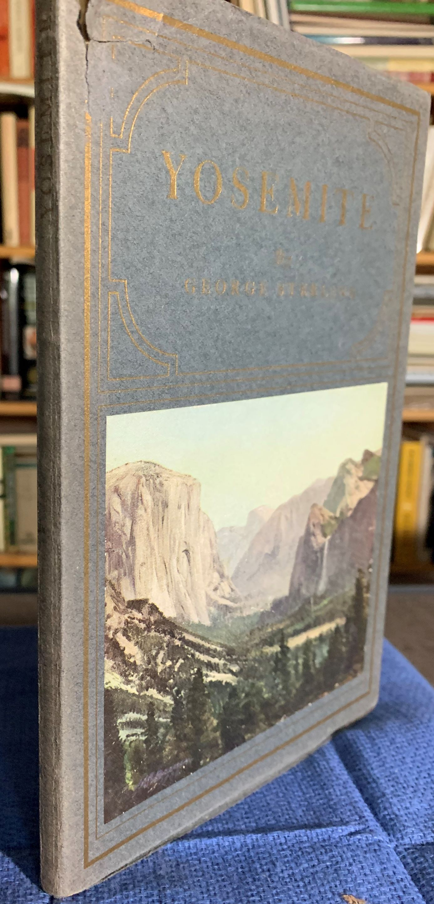 Image for Yosemite, An Ode.  With, A Cover in Colour After the Painting by H. J. Breuer, and, Illustrations After Photographs by W. E. Dassonville.
