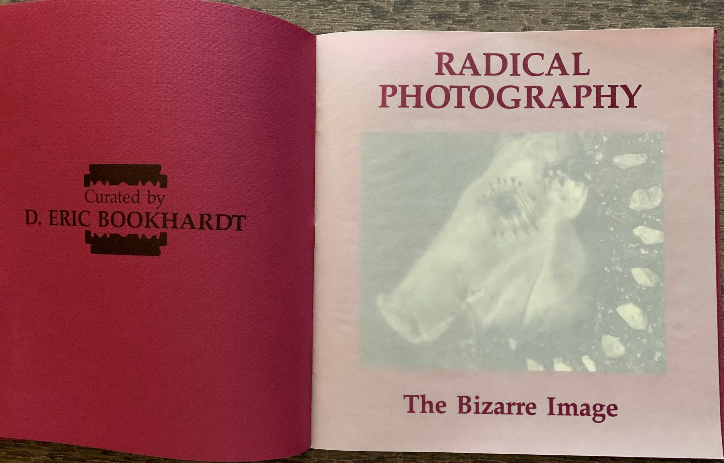 Image for Radical Photography, The Bizarre Image.