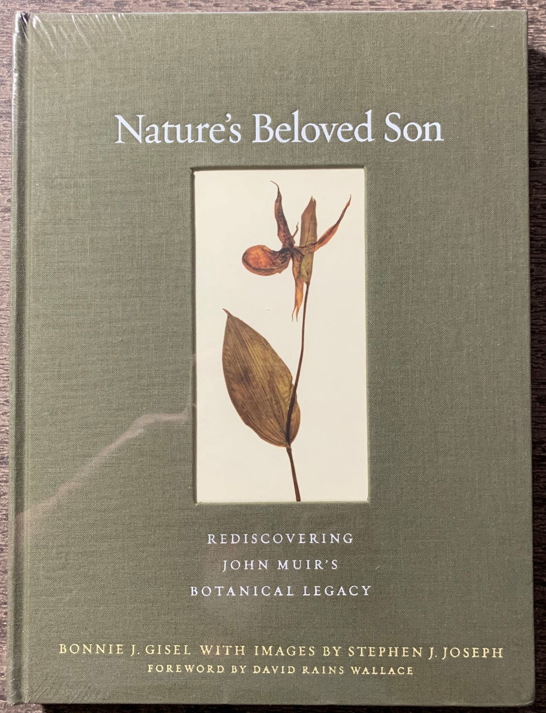 Image for Nature's Beloved Son, Rediscovering John Muir's Botanical Legacy.  Forward by David Rains Wallace.